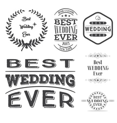 Set best wedding ever labels vector