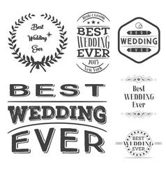 Set of best wedding ever labels vector