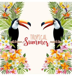 Tropical Flowers Toucan Bird Tropical Background vector