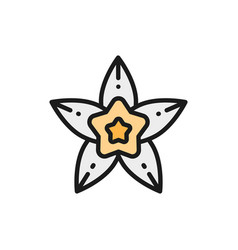 Vanilla star anise flat color line icon isolated vector