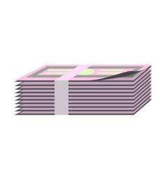 banknotes bundle bank notes paper money cash pack vector image