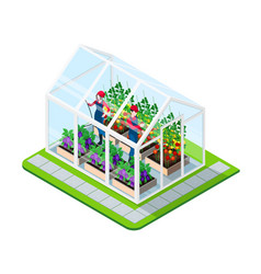 greenhouse isometric concept vector image vector image