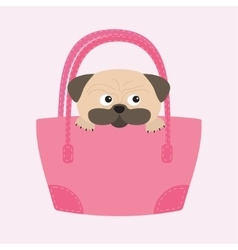 Pug dog mops in the bag Cute cartoon character vector image vector image