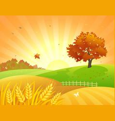 autumn fields sunset vector image