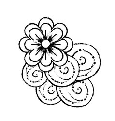 Figure beauty flowers with petals and ornamental vector