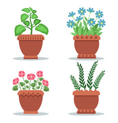 Indoor foliar plants and blooming flowers set vector