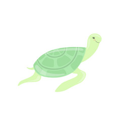 Lovely turtle cute sea creature character vector