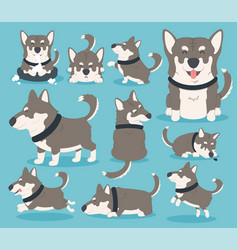 My dog eps10 vector