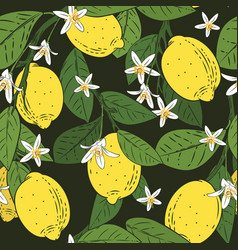 seamless pattern of branches with lemons green vector image