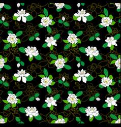 seamless pattern with gardenia jasminoides cape vector image