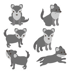 set of cute wolves set of cute wolves vector image