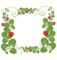 Strawberry floral frame vector image