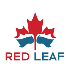 red maple leaf and water logo design vector image