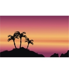 Coconut palms on beach vector image vector image