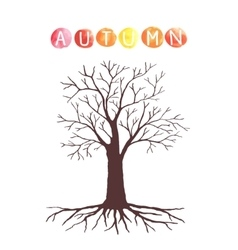 Autumn tree with without leaves vector