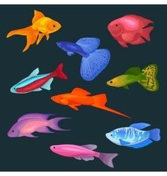 Aquarium fish icons set vector