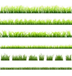 collection different types green grass vector image