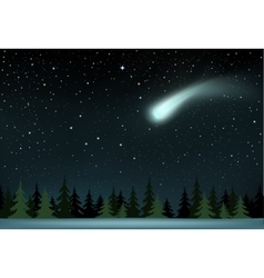 Comet falls over the night wood vector