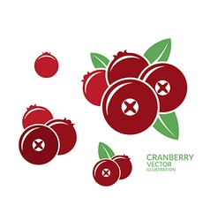 Cranberry Icon set vector