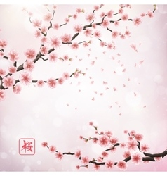 Realistic japan cherry branch EPS 10 vector image