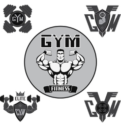 Set gym vector