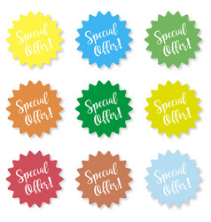 set of stickers with the inscription special vector image