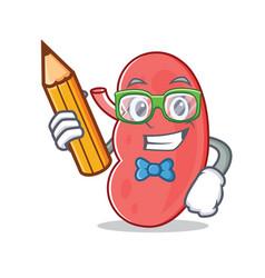 Student kidney character cartoon style vector