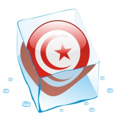 Tunisia flag vector image