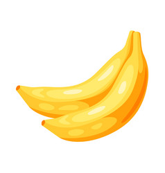 yellow bananas vector image