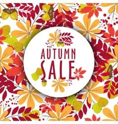 autumn banners with leaves and berries vector image vector image