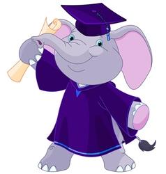 Elephant Graduates vector image