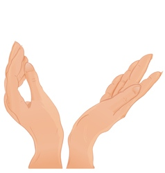Beautiful female two pair open hands vector