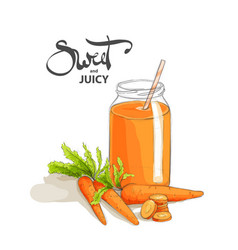 Carrot smoothies on a white background vector