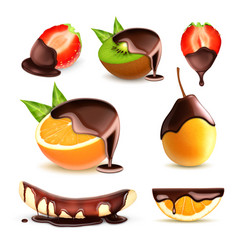 fruits and berries with chocolate vector image