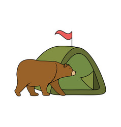 wild bear grizzly with camping tent vector image