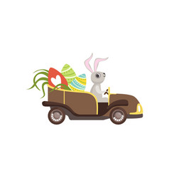 Cute bunny driving vintage car decorated with vector