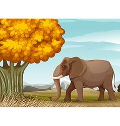 A big brown elephant near the big tree vector image