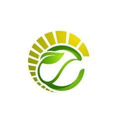 circle leaves ecology logo tree leaf logo design vector image