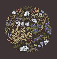 circular botanical decorative design element vector image