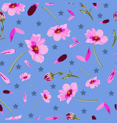 cosmos flowers and stars -flowers in bloom vector image