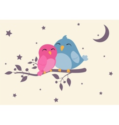 couples birds sitting on night scene vector image