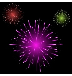 Festive colorful fireworks vector image