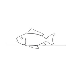 fish one line drawing vector image