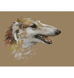 Greyhound animal dog watercolor vector image