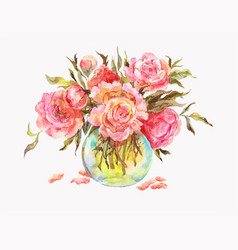 Pink roses or peonies in a glass vase watercolor vector