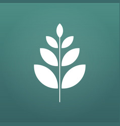 plant and sprout growing icon flat design vector image