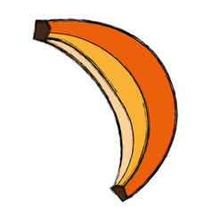 sweet banana fruit vector image