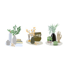 Three interior composition with branches in vases vector