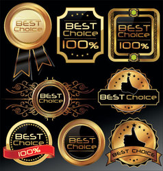Best choice elegant labels vector