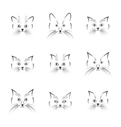 black cat face vector image